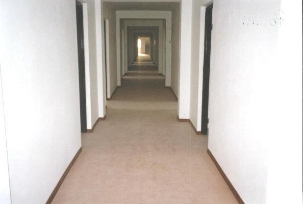 brązowa wykładzina dywanowa na korytarzu